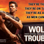 WolfTrouble-TourGraphic